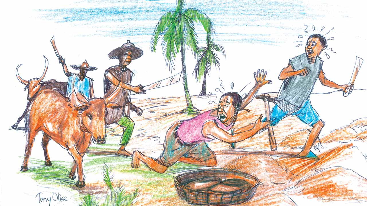 An illustrative image of a farmland being invaded by Fulani cattle herders/herdsmen