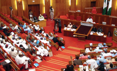 Nigeria's National Assembly members