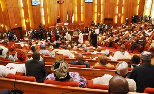 Nigeria Senate during a plenary session