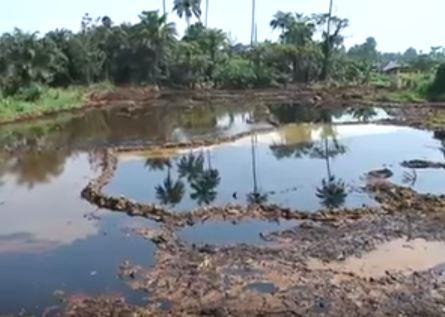 Oil spill in the Niger Delta, Nigeria