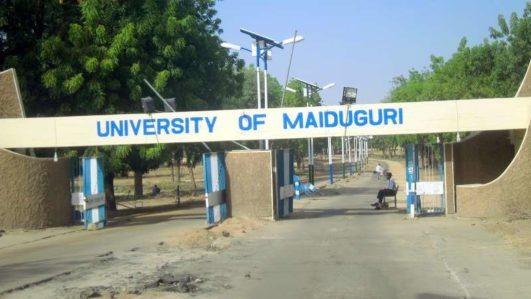 University of Maiduguri in Borno State, Nigeria