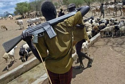 Herdsman (cattle rearer) carrying an automatic weapon